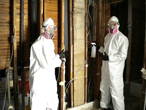 Asbestos and lead paint and roach poop, oh my!