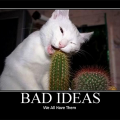 Bad Ideas.