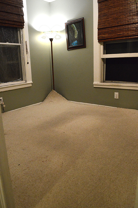 pulling up carpet
